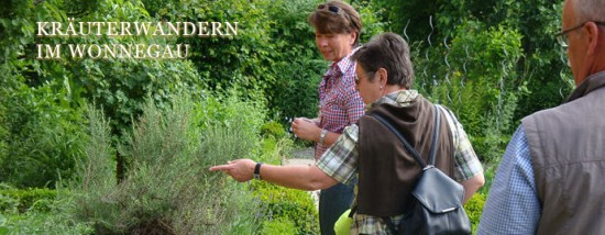 Kräuterwandern im Wonnegau